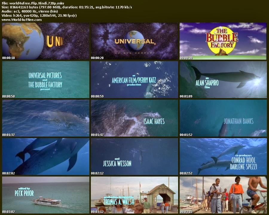flipper online free