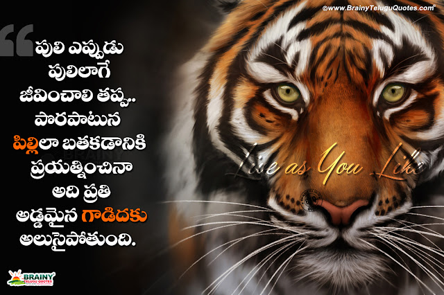 Nice Words on life in Telugu, best Telugu attitude messages hd wallpapers, Trending Share Chat Telugu Quotes