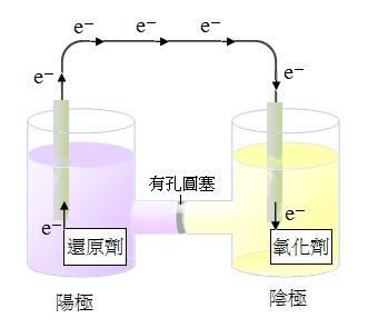 果凍2020藝術文化讀書會 Jelly Reading Club: 電池 Galvanic Cells