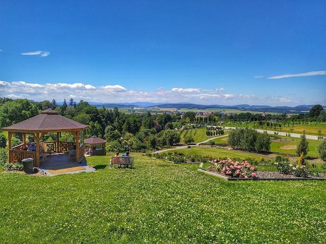 widok z arboretum w Wojsławach na panoramę gór, Góry Sowie
