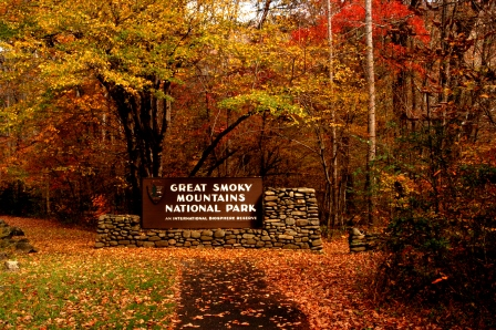 Smoky Mountains Fall Colors Best Time 2020.The Smoky Mountain Hiking Blog August 2019