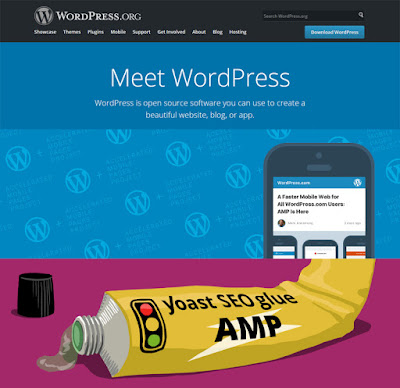 Cara Setting Google AMP Pada WordPress