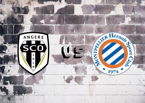 Angers vs Montpellier  Resumen