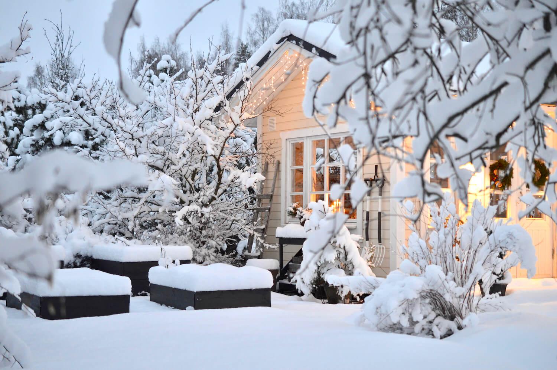 talvinen keittiopuutarha