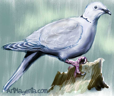 Collared Dove sketch painting. Bird art drawing by illustrator Artmagenta