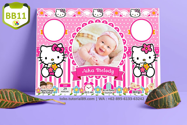 Biodata Bayi Costume Baby Girl Kode BB11 | Hello Kitty