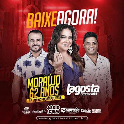 Lagosta Bronzeada - Moraújo - CE - Novembro - 2019