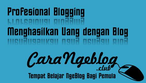 Profesional Blogging Menghasilkan Uang dengan Blog