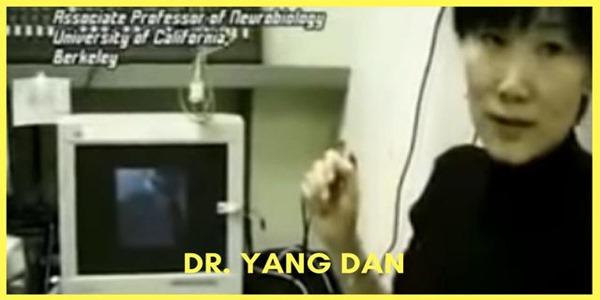 Dr. Yang Dan