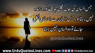 Jis Insaan Ki Jaan Nikal Jaye To Wo Zinda || Life Quotes In Urdu Quotes Lines