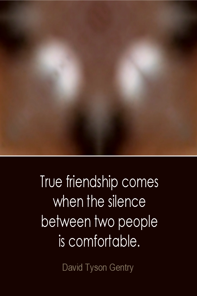 visual quote - image quotation: True friendship comes when the silence between two people is comfortable. - David Tyson Gentry