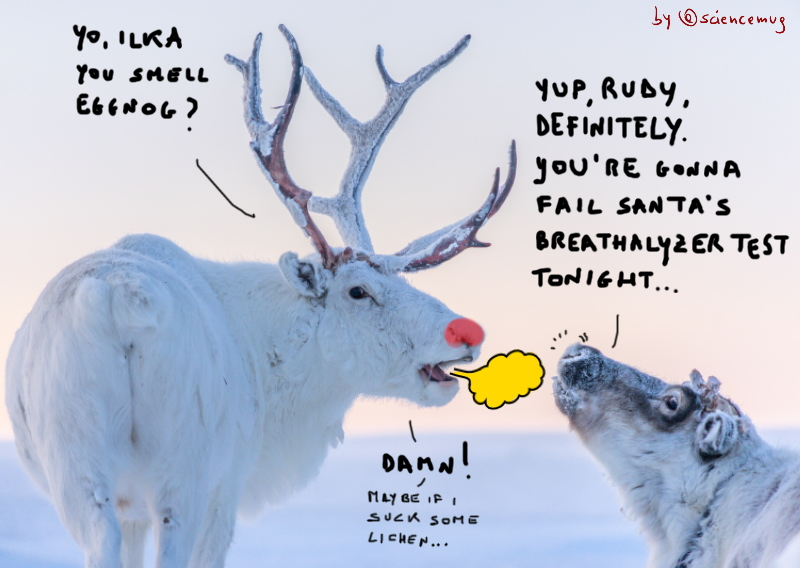 Rudolph The Red-Nosed Reindeer asks a female if its breath smells of eggnog