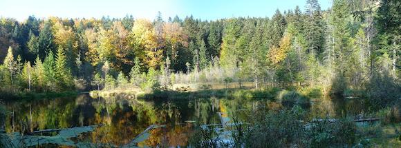 Національний природний парк «Сколівські Бескиди». Озеро Журавлине. Львівська область