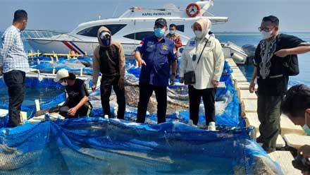 Komite II DPD RI Tinjau Lokasi Perikanan Pulau Panggang