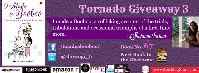 Tornado Giveaway 3: Book No. 67: I Made a Booboo: A mom who had parenting all sorted...until she had a baby by Shivangi Sharma