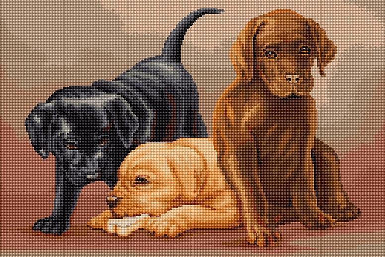 "B435 ""Dogs"" Luca-S"