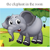 Thành ngữ tiếng Anh: the elephant in the room