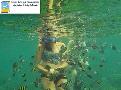 indonesia surga wisata bahari