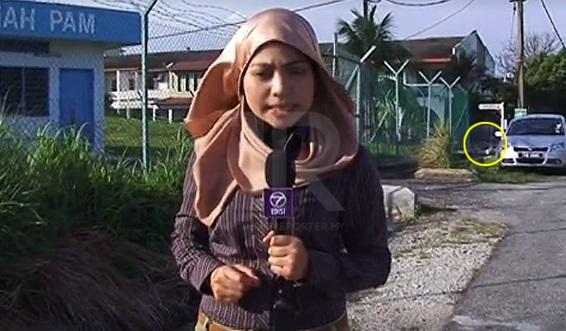 Video seorang wartawan dan jurukamera NTV7 dikejar anjing viral di media sosial cetus rasa geli hati netizen.