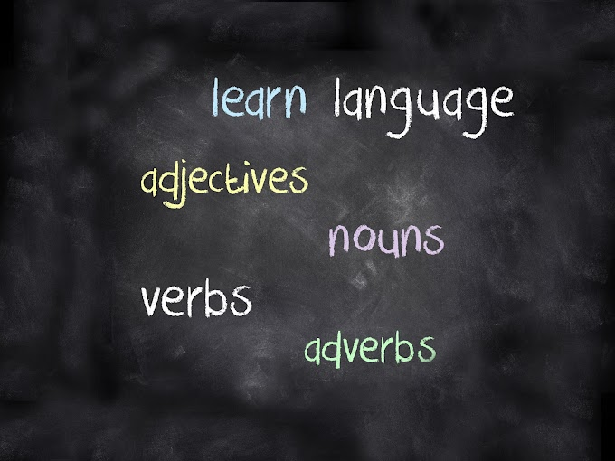 Language Course: French | Spanish | German..