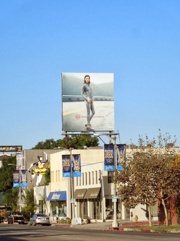 AG Adriano Goldschmeid nov13 billboard