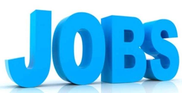 दिल्ली हाईकोर्ट में 132 पदों को भरने में निकली भर्ती, ऐसे करें आवेदन