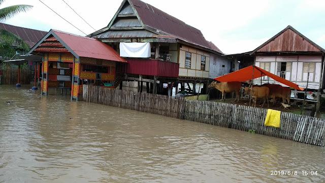 Banjir Melanda Bone, Sejumlah Desa Terendam dan Terisolir
