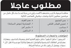 8 وظائف شاغرة في منظمة مرموقة بسلطنة عمان