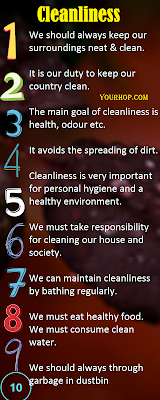 Short essay on cleanliness