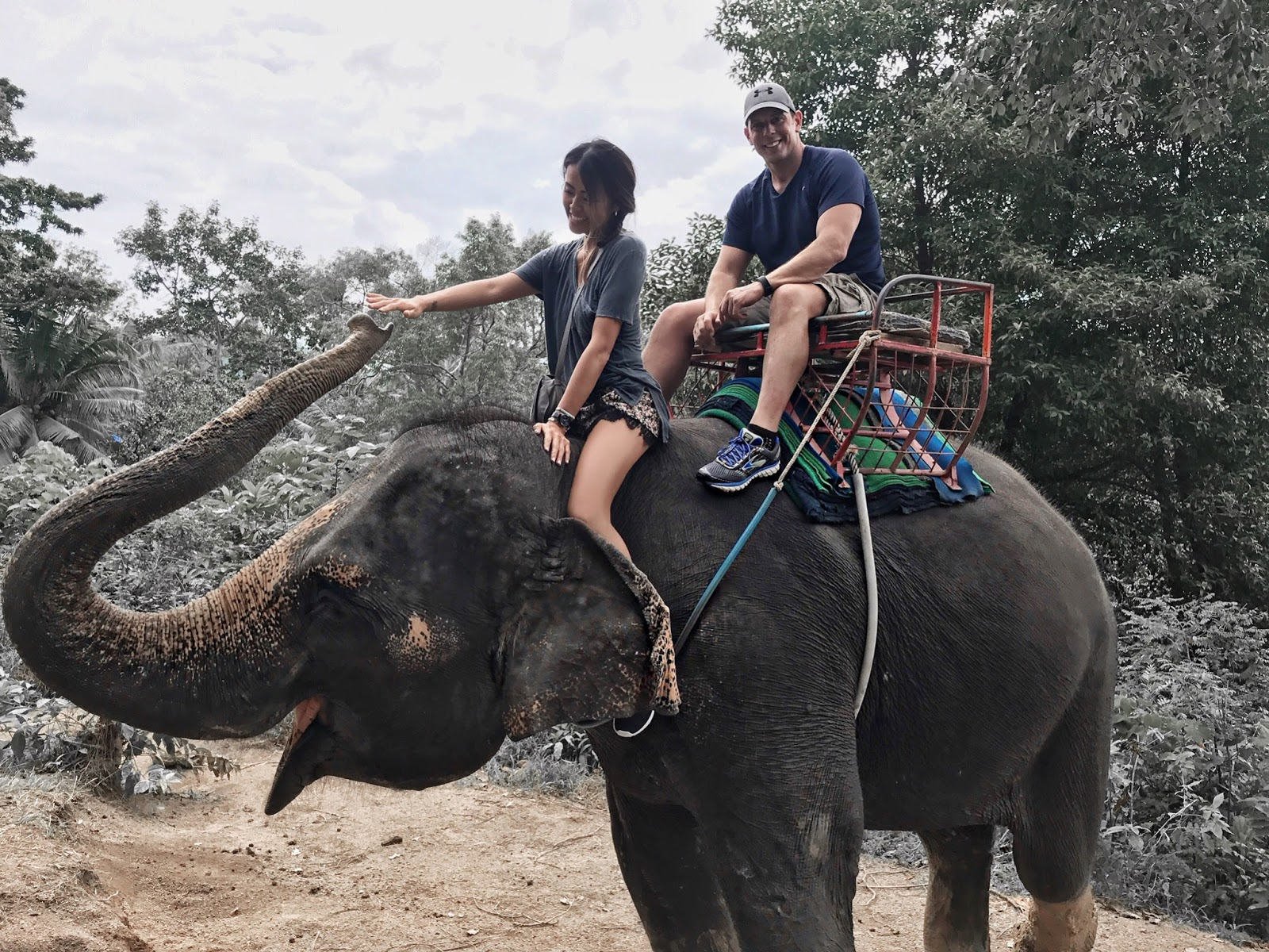 Elephant Ride Thailand
