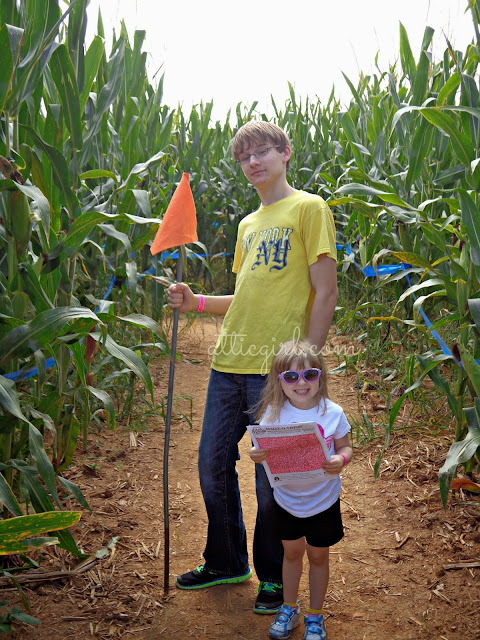 Corn mazes in PA
