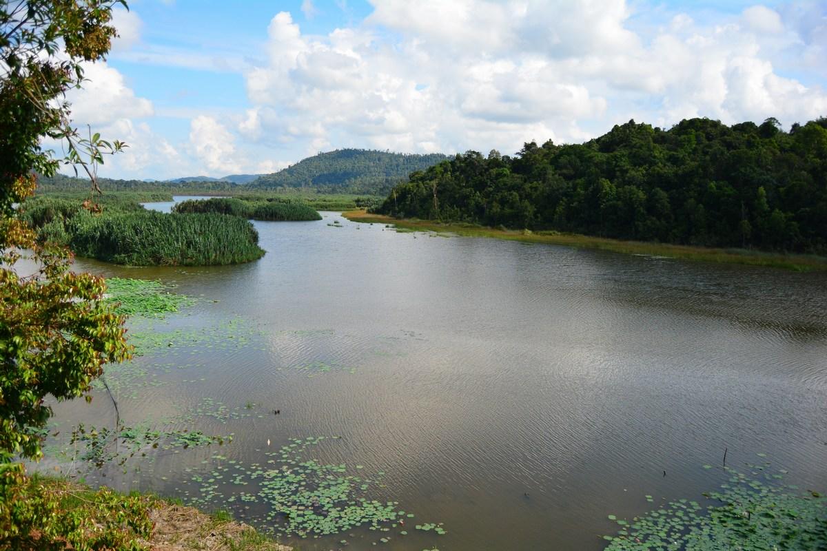 Chini lake Malaysia