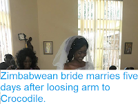 https://sciencythoughts.blogspot.com/2018/05/zimbabwean-bride-marries-five-days.html