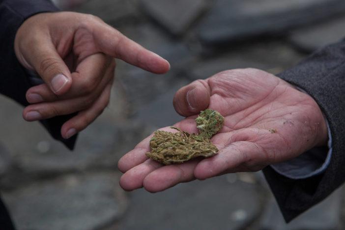 Mariguana para uso medicinal es legal desde hoy en el país: Conadic