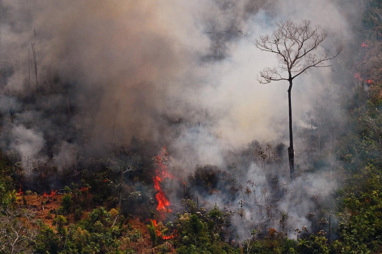 Queimadas na Amazônia chamaram a atenção da comunidade internacional — Foto: Carl de Souza/AFP