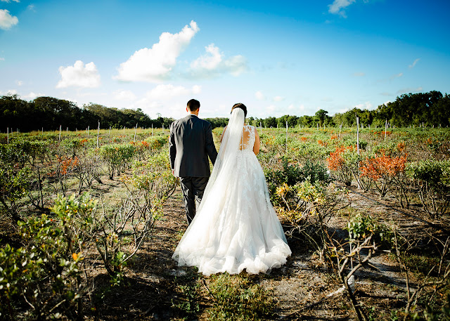 bride and groom in field at Ever After Farms