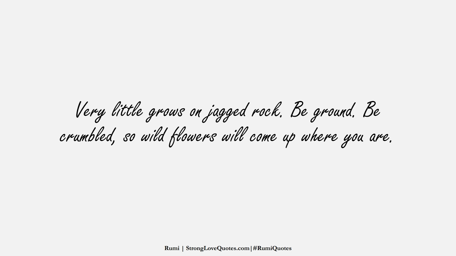 Very little grows on jagged rock. Be ground. Be crumbled, so wild flowers will come up where you are. (Rumi);  #RumiQuotes
