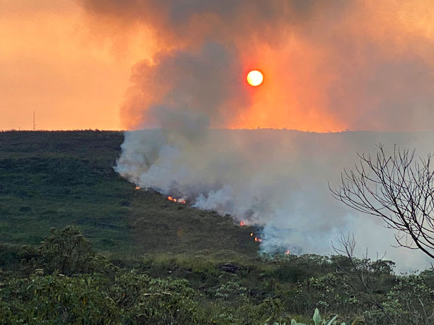 Até o momento, não houve nenhum registro de feridos e a causa do fogo é desconhecida (Foto: Reprodução)