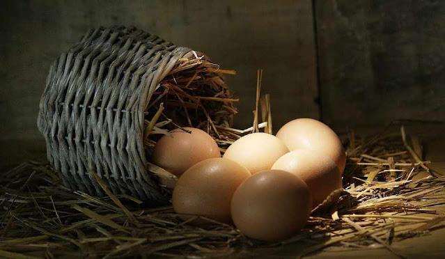 как сохранить яйца