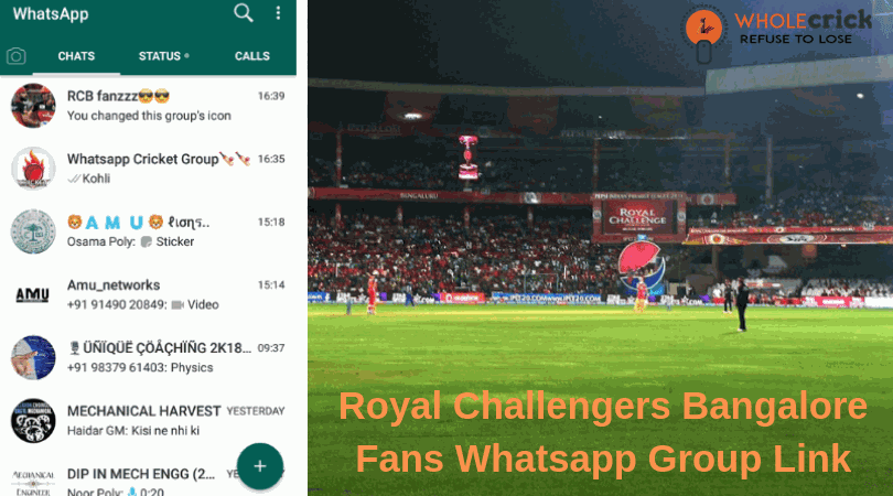 WholeCrick: 150+ Best Royal Challengers Bangalore Fans