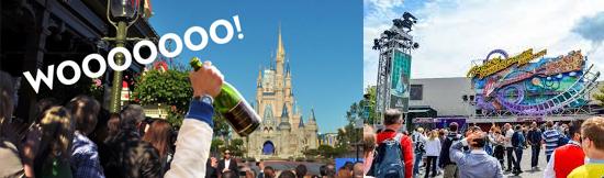 15 coisas estranhas proibidas na Disneylândia - Bebidas alcoólicas