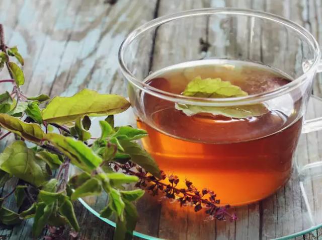 Teh Herbal Daun Selasih Meningkatkan Kekebalan Immunitas