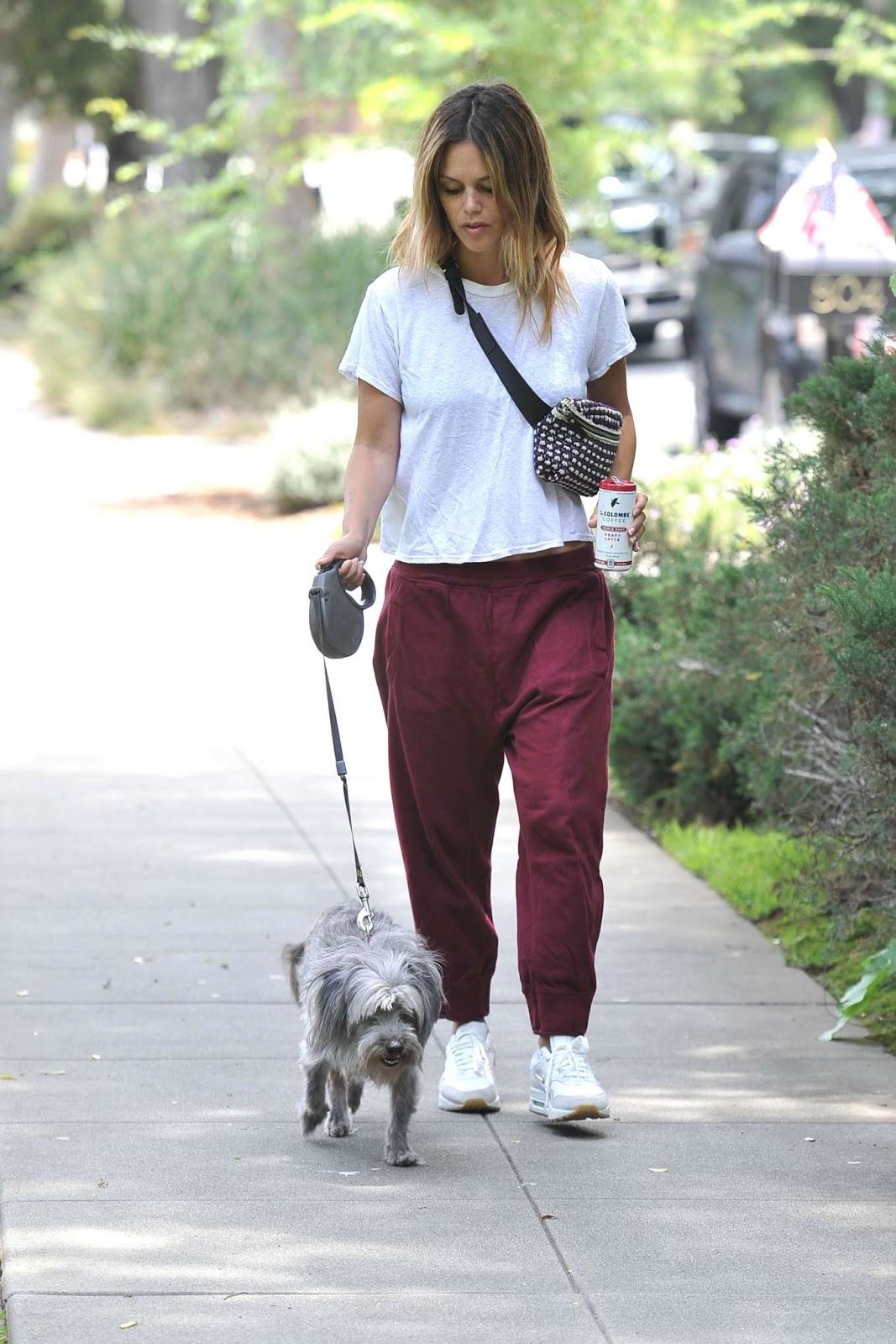 Rachel Bilson seen walking her dog in LA
