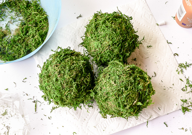 Step Four: let moss balls dry then cut off stray moss