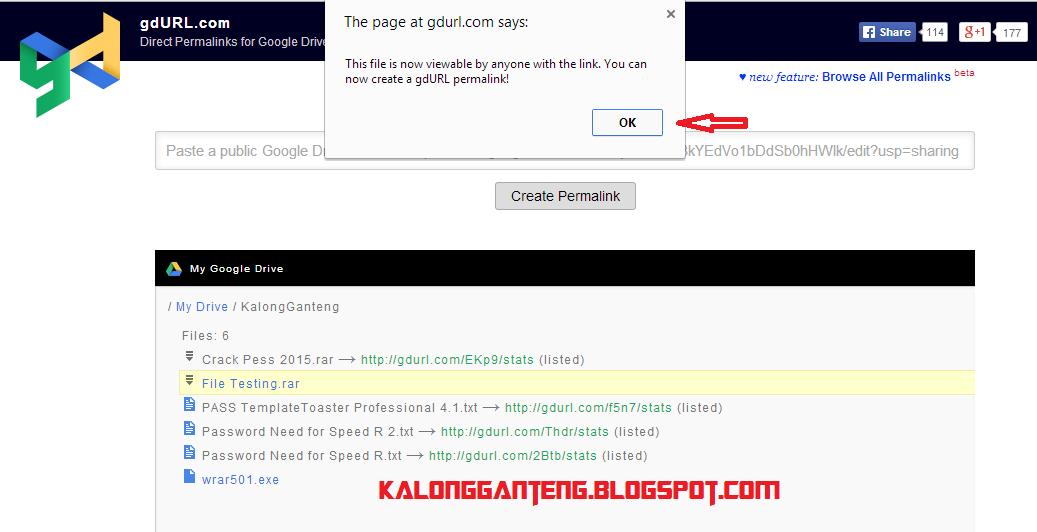 Resume Download Google Drive Idm - Resume Examples | Resume Template