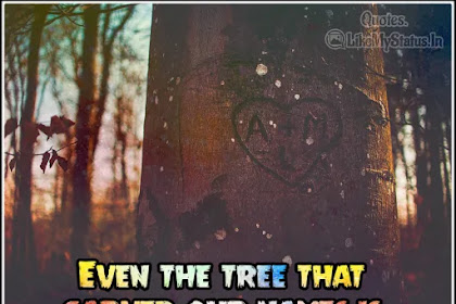 Even the tree that carved | Sad love quote in english