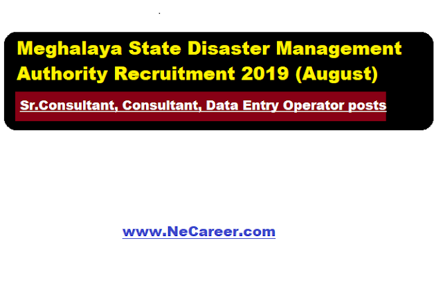 Meghalaya State Disaster Management Authority Recruitment 2019 (August) | Sr. Consultant/Consultant/Data Entry Operator posts