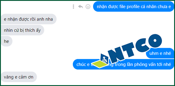 thiet ke profile chuyen nghiep