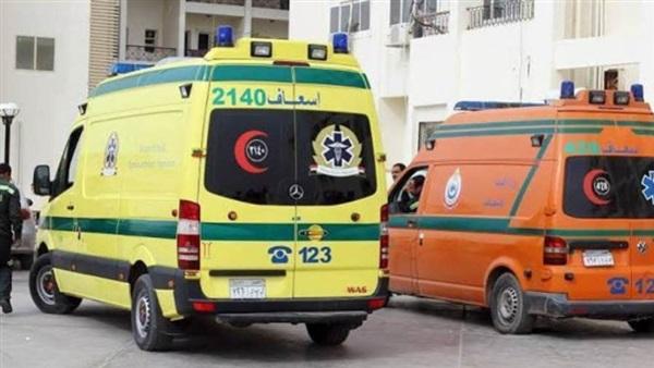 بينهم 3 أطفال.. إصابة 5 من عائلة واحدة بتسمم في البحيرة