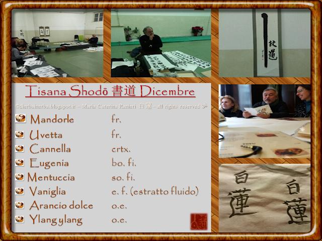 Tisana Shodō 書道 di Dicembre